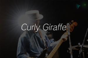 Curly Giraffe