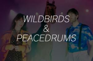 WILDBIRDS & PEACEDRUMS